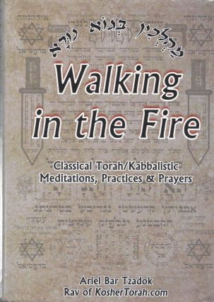 Walking in the Fire: Classical Torah/ Kabbalistic Meditations, Practices & Prayers. Ariel Bar Tzadok